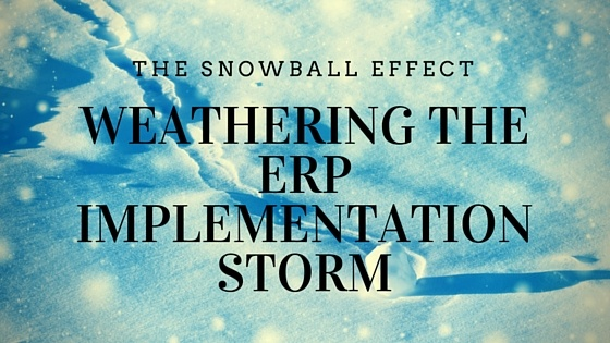 The Snowball Effect: Weathering the ERP Implementation Storm